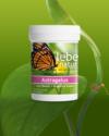 Astragalus   Goji Beere   Angelica sinensis
