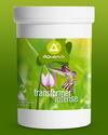 transformer intense, natürliches Energetikum - Konzentrat